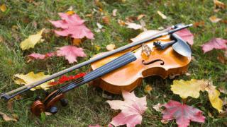 バイオリンと落ち葉